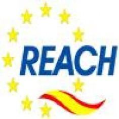 POSIZIONE DI LAB CIRCUITS, S.A. RISPETTO AL regolamento REACH (CE/1907/2006)